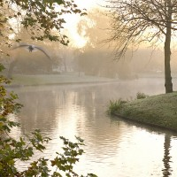 Photography Tours in Leiden 13
